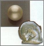 Perle bianche dei mari del Sud (Australia, Myanmar e Indonesia)