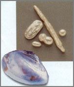 perle d'acqua dolce